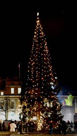 No l en angleterre ou christmas grande f te nationale - Sapin de noel en anglais ...